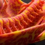 Color 3D Printing Art Sculpture by Neri Oxman of the MIT Media Lab